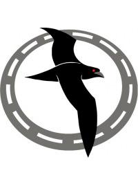 Логотип Буревестник